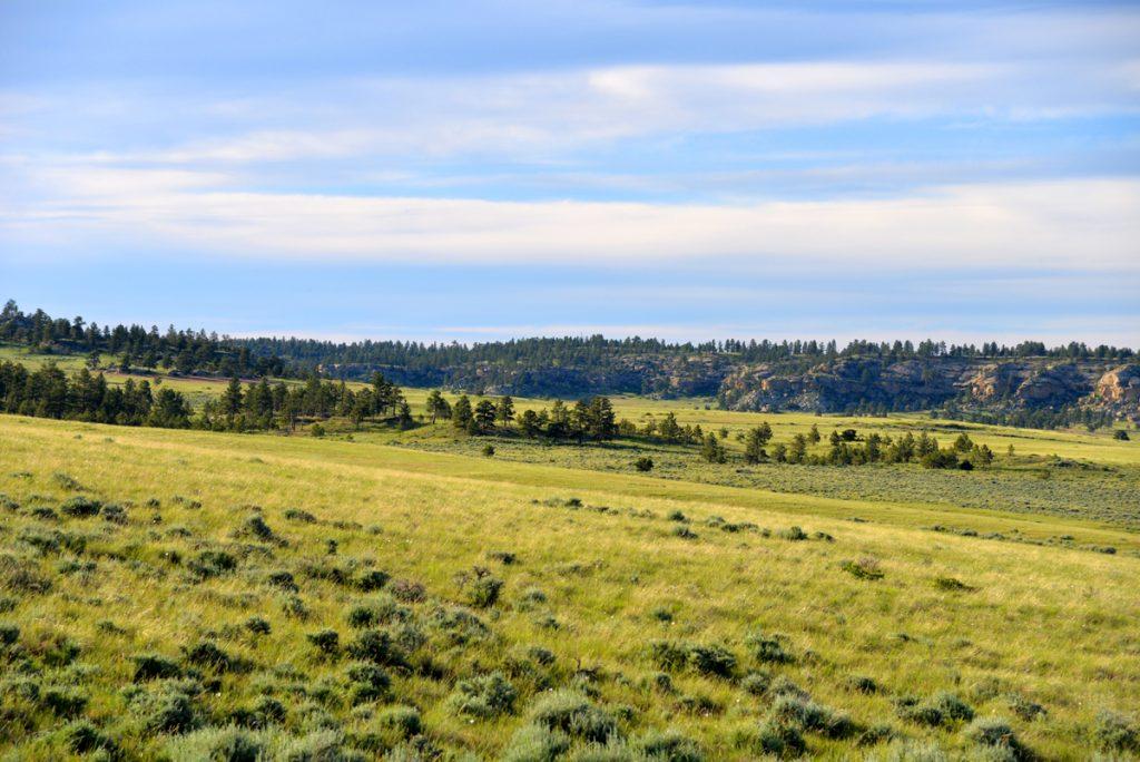 Bull-Mountain-Ranch-Billings-MT13
