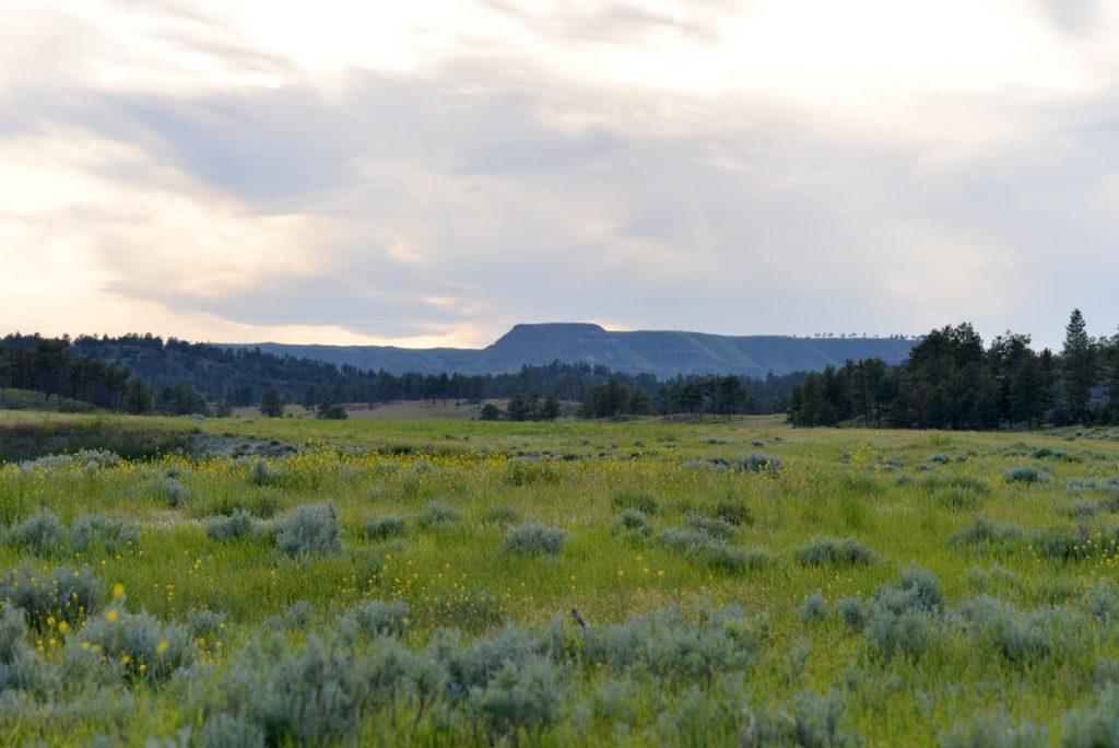 Bull-Mountain-Ranch-Billings-MT15