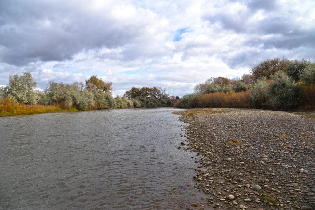 Clarks-Fork-Irrigated-Farm-Fromberg-Montana10