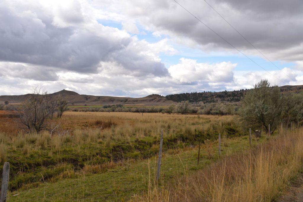 Clarks-Fork-Irrigated-Farm-Fromberg-Montana17