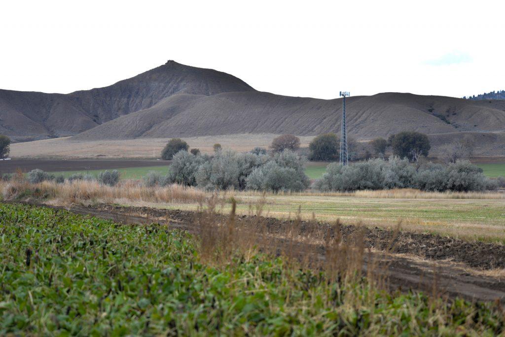 Clarks-Fork-Irrigated-Farm-Fromberg-Montana2