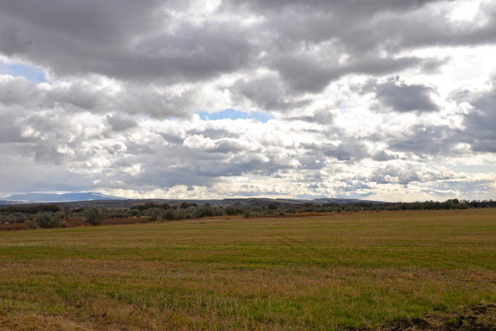 Clarks-Fork-Irrigated-Farm-Fromberg-Montana20