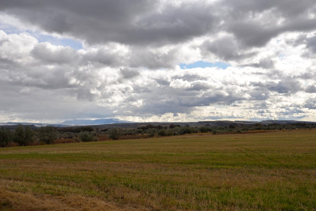 Clarks-Fork-Irrigated-Farm-Fromberg-Montana21
