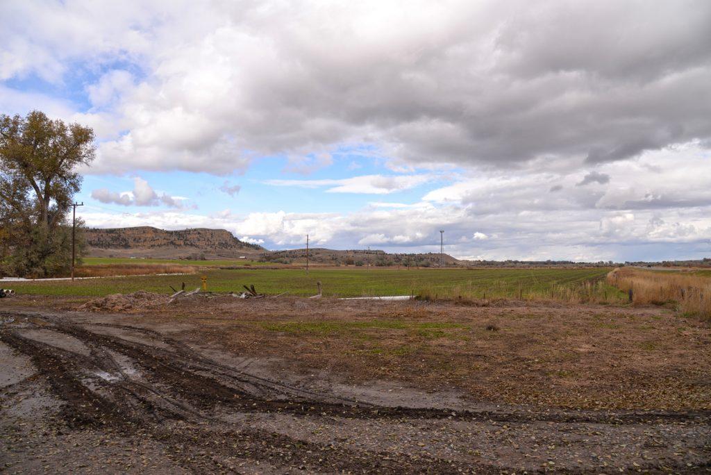 Clarks-Fork-Irrigated-Farm-Fromberg-Montana22