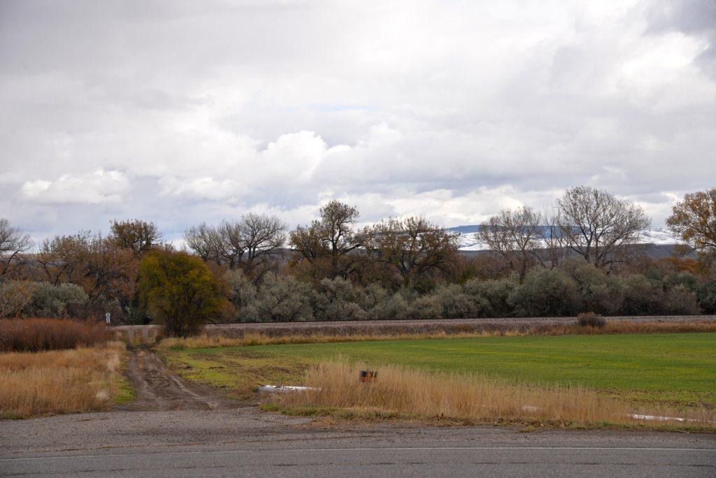 Clarks-Fork-Irrigated-Farm-Fromberg-Montana23