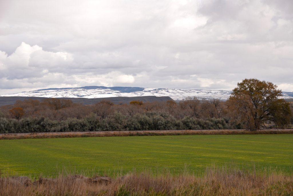 Clarks-Fork-Irrigated-Farm-Fromberg-Montana26