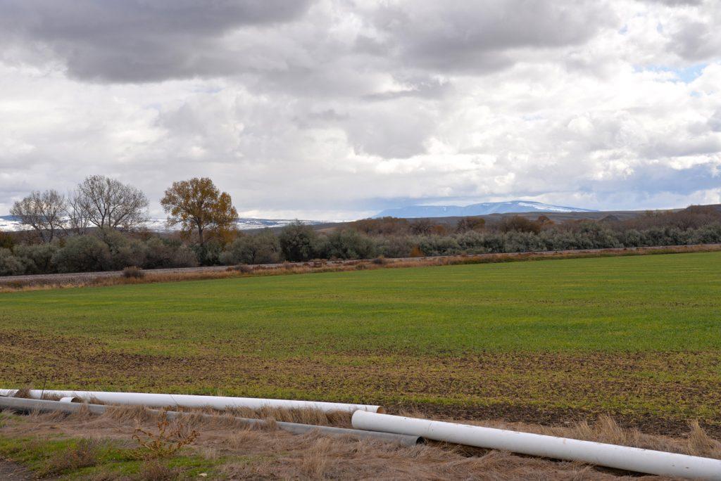Clarks-Fork-Irrigated-Farm-Fromberg-Montana27
