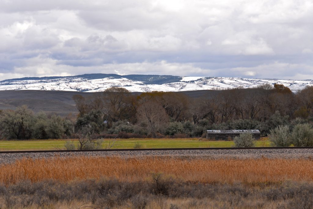 Clarks-Fork-Irrigated-Farm-Fromberg-Montana29