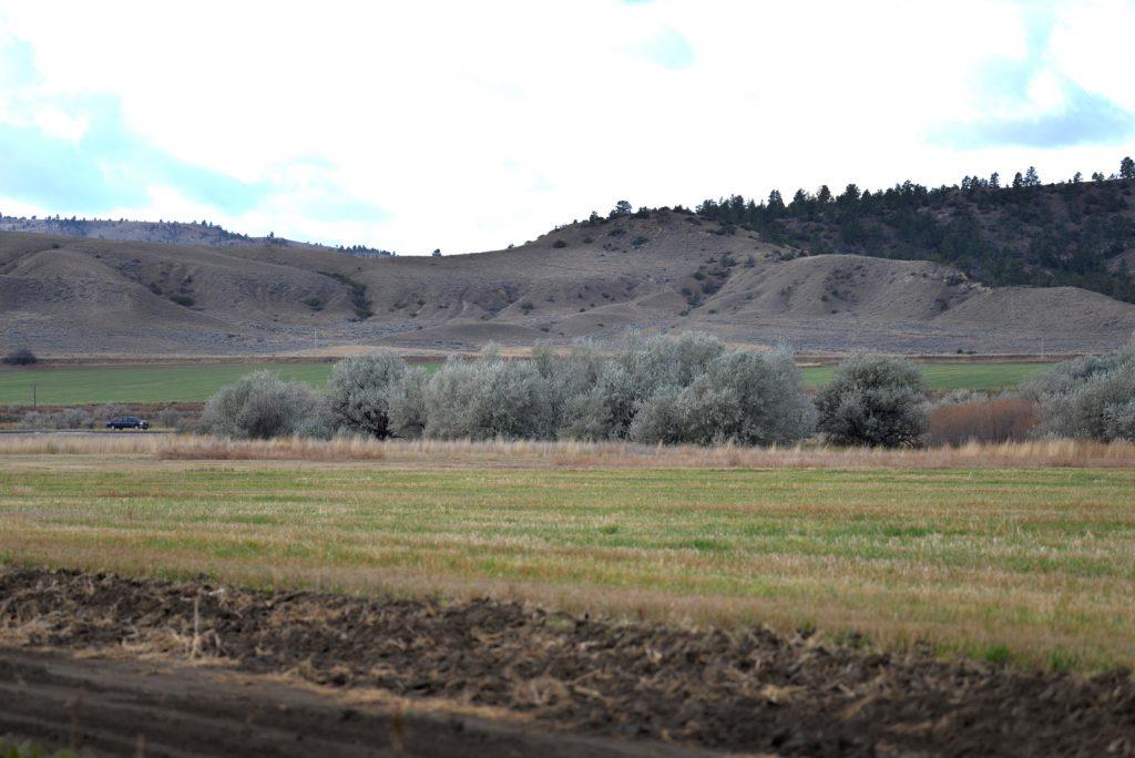 Clarks-Fork-Irrigated-Farm-Fromberg-Montana3