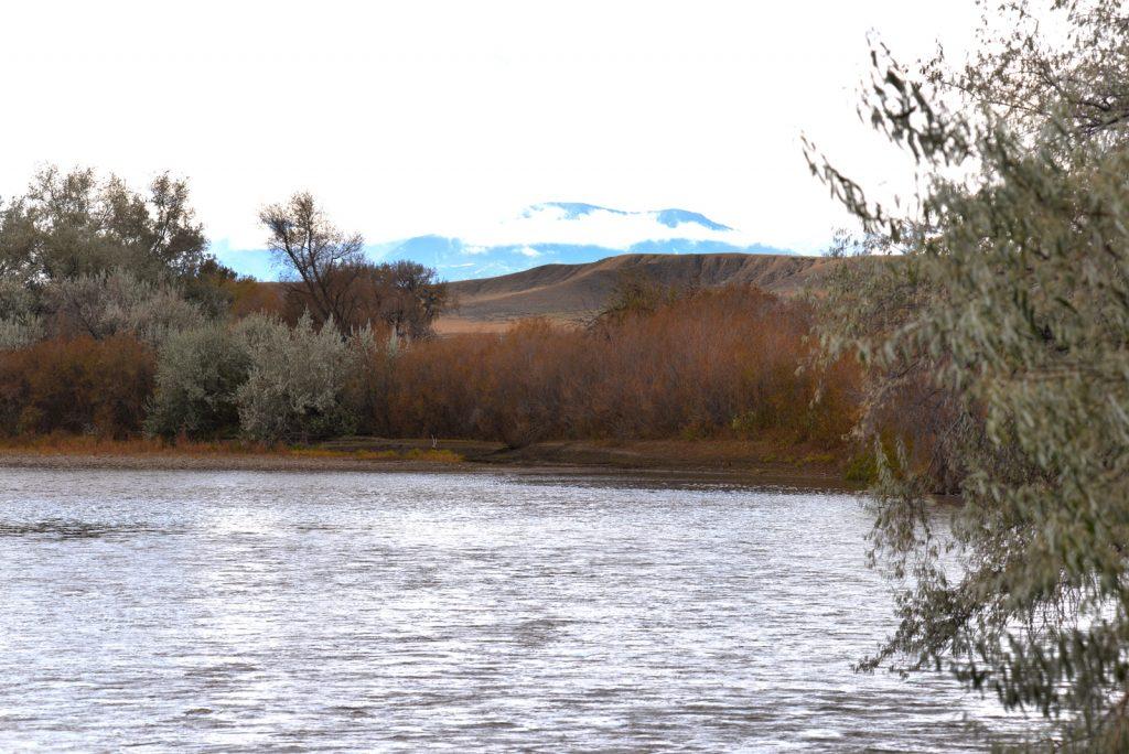 Clarks-Fork-Irrigated-Farm-Fromberg-Montana6
