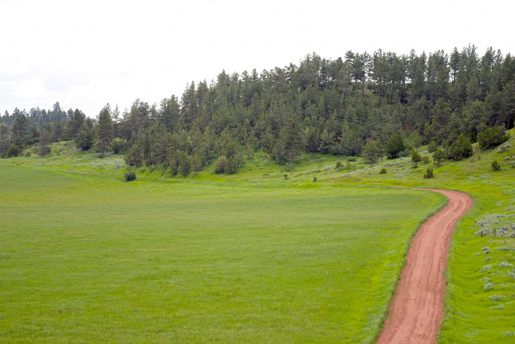 Ranch-for-Sale-Broadus-Montana1