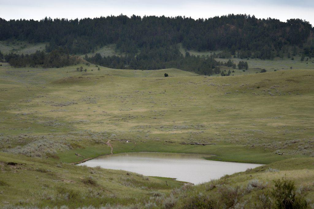 Ranch-for-Sale-Broadus-Montana18