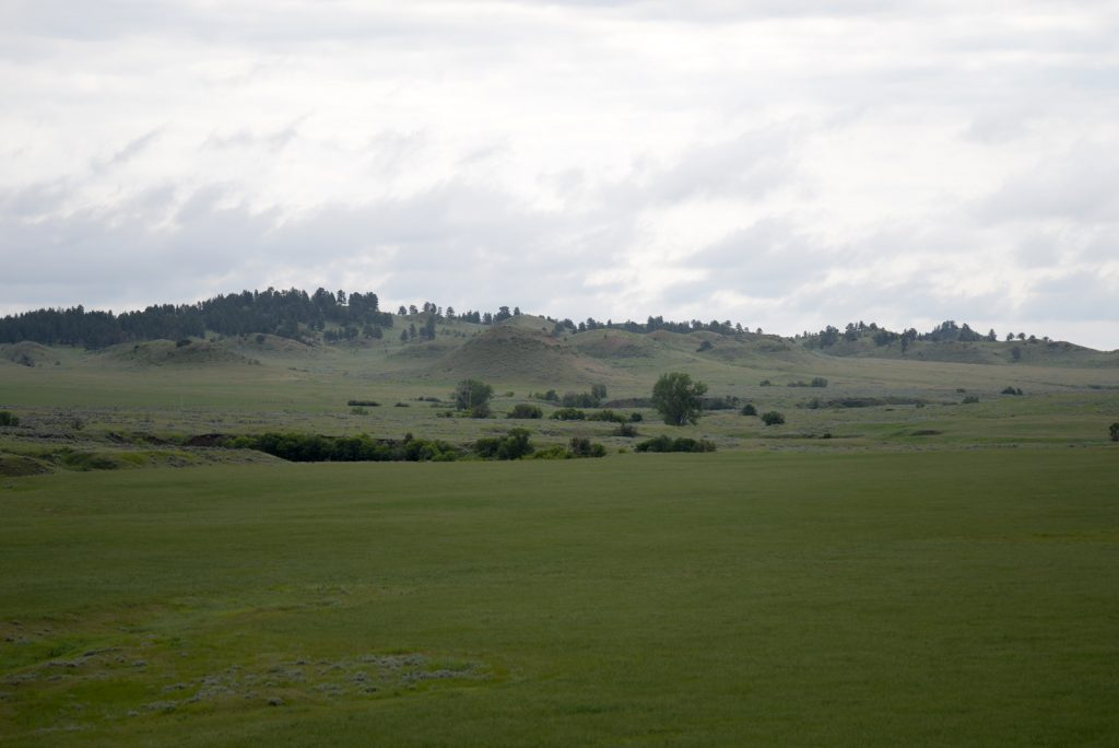 Ranch-for-Sale-Broadus-Montana2