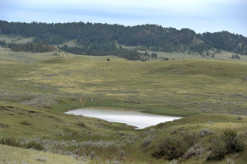 Ranch-for-Sale-Broadus-Montana21