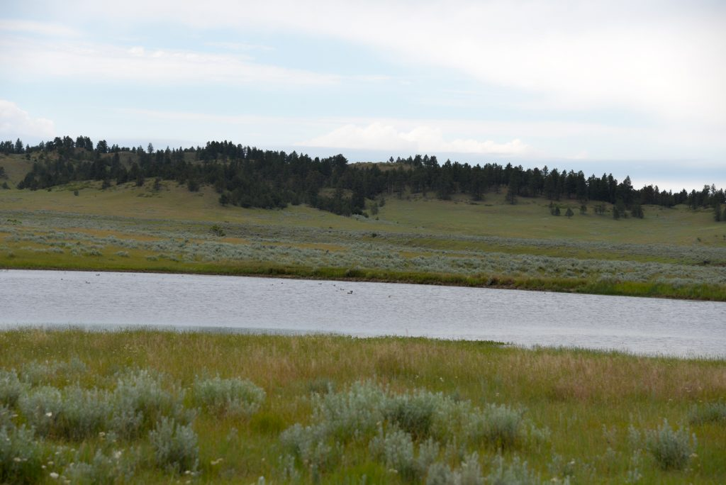Ranch-for-Sale-Broadus-Montana35
