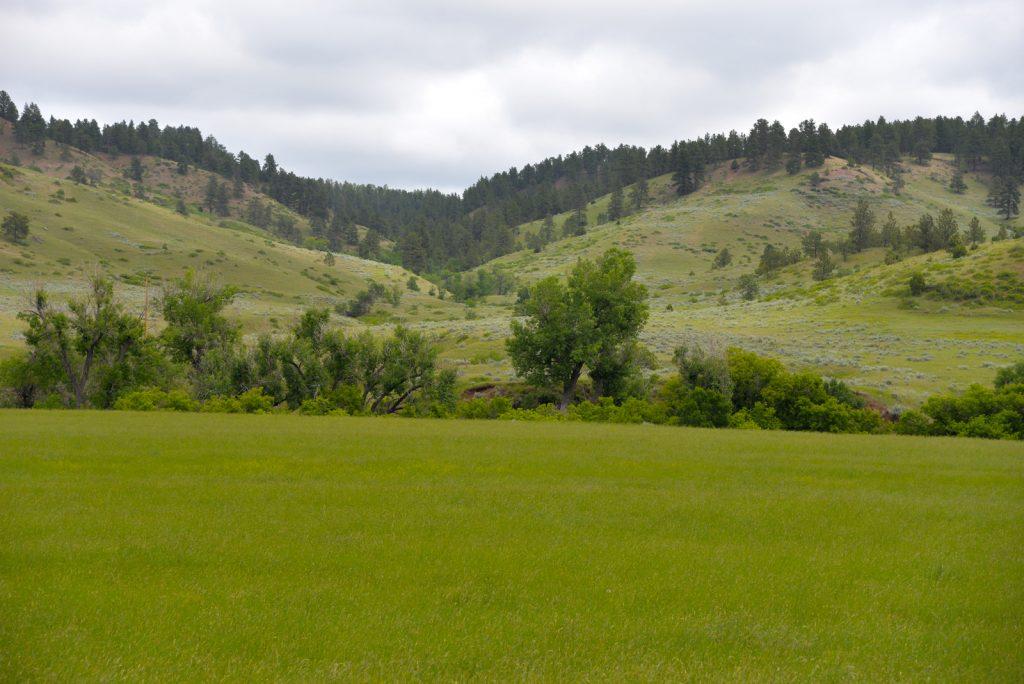Ranch-for-Sale-Broadus-Montana8
