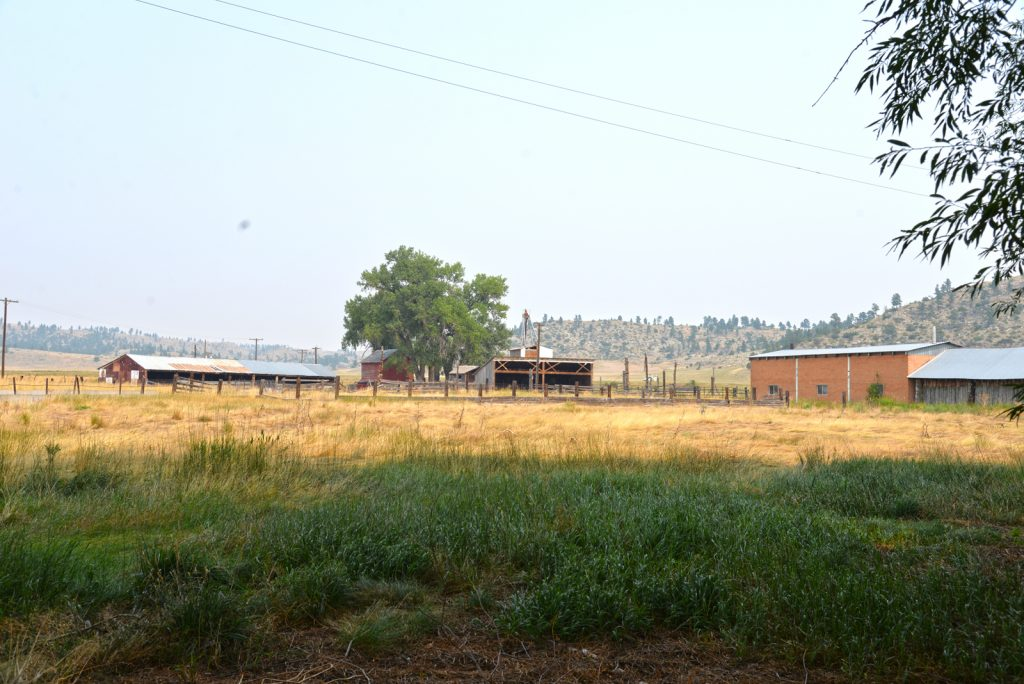 The Holmgren Ranch27