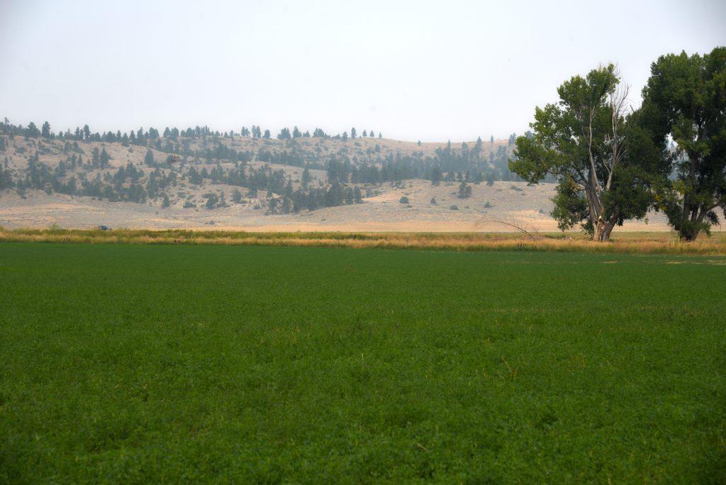The Holmgren Ranch32