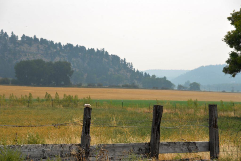 The Holmgren Ranch35